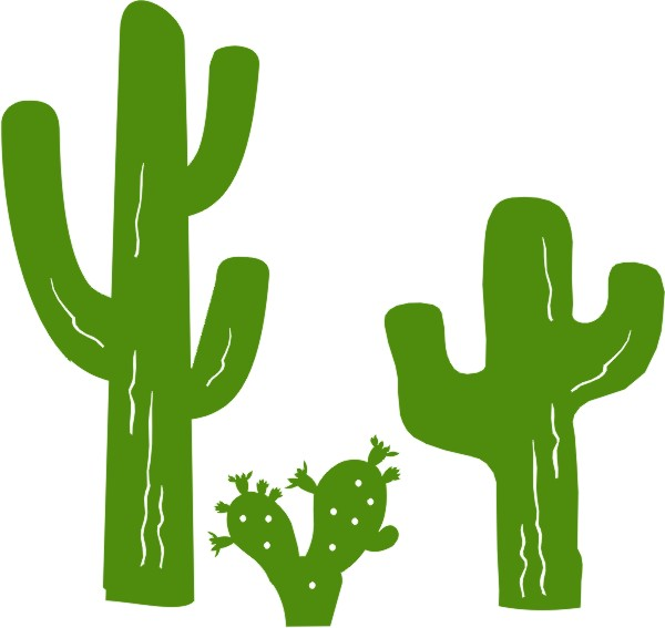 Cactus (set of 3 )